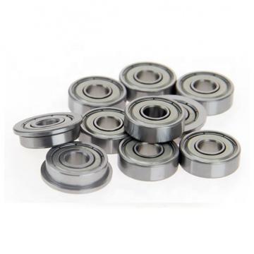 NSK 6006DDU Bearing 6006DU Ball bearing 6006DDUCM Deep groove ball bearing 6006 DU Bearings